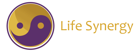 Life Synergy Retreats
